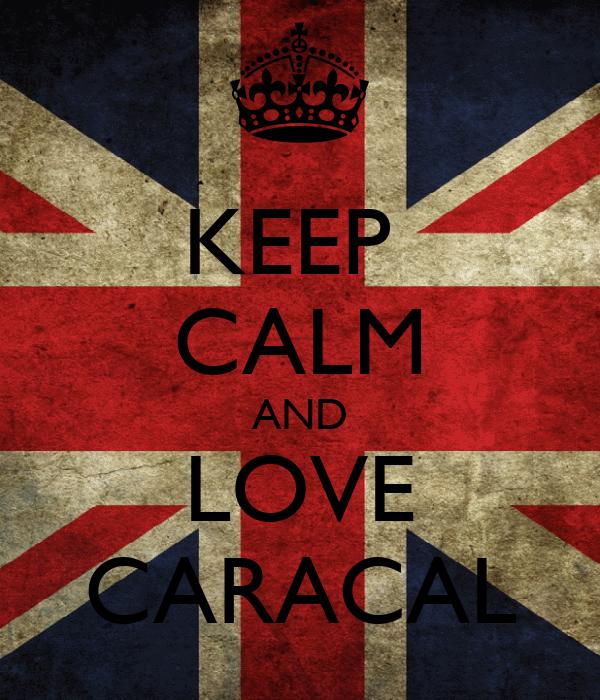 KEEP  CALM AND LOVE CARACAL