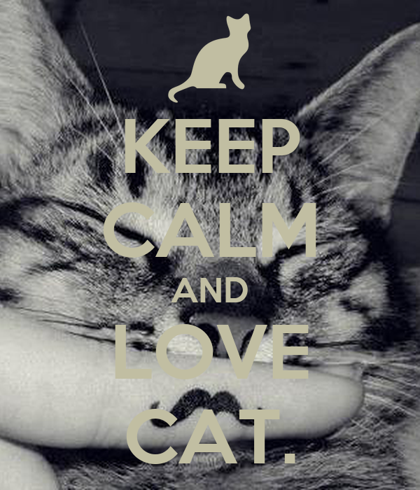 KEEP CALM AND LOVE CAT.