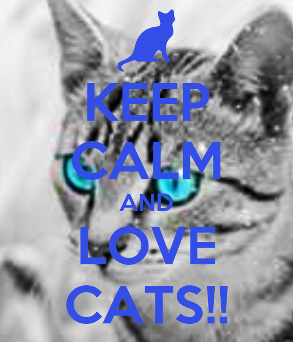 KEEP CALM AND LOVE CATS!!