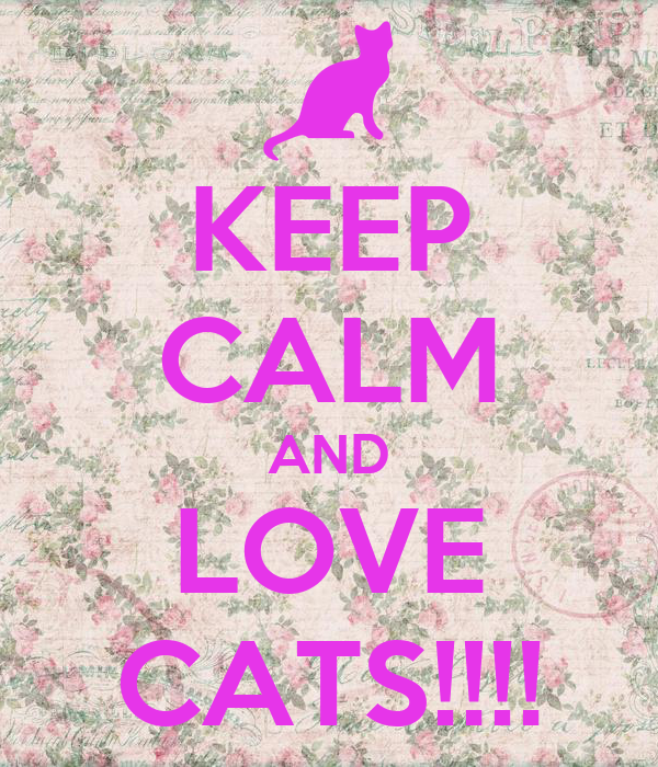 KEEP CALM AND LOVE CATS!!!!