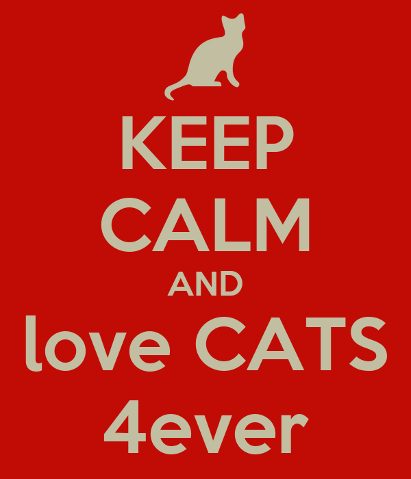 KEEP CALM AND love CATS 4ever