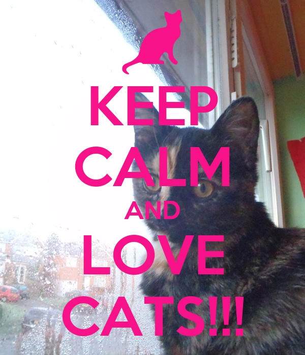 KEEP CALM AND LOVE CATS!!!