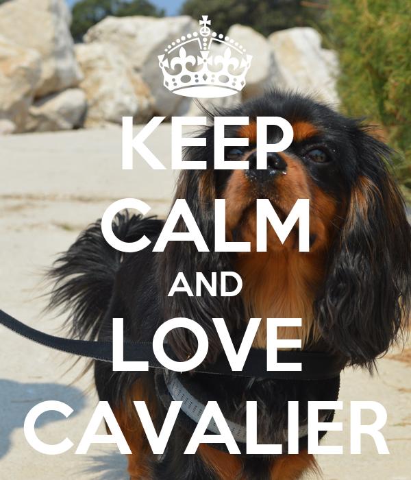KEEP CALM AND LOVE CAVALIER