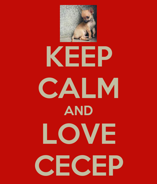 KEEP CALM AND LOVE CECEP