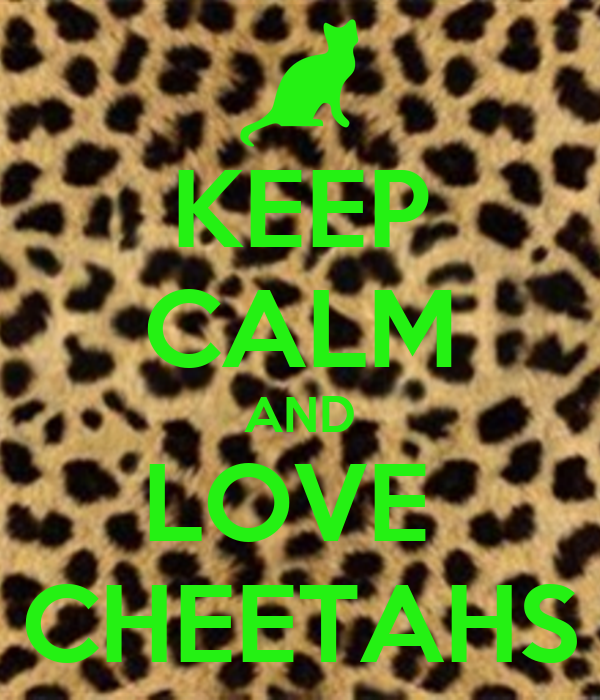 KEEP CALM AND LOVE  CHEETAHS