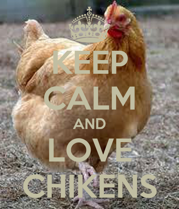 KEEP CALM AND LOVE CHIKENS