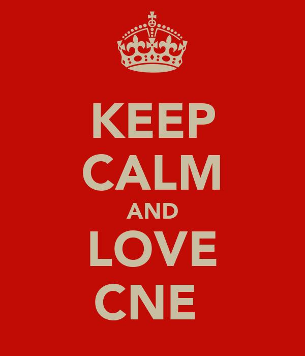 KEEP CALM AND LOVE CNE