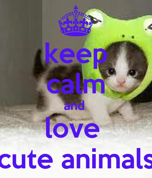 keep calm and  love  cute animals