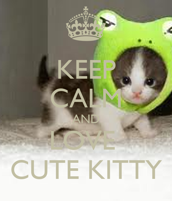 KEEP CALM AND LOVE  CUTE KITTY