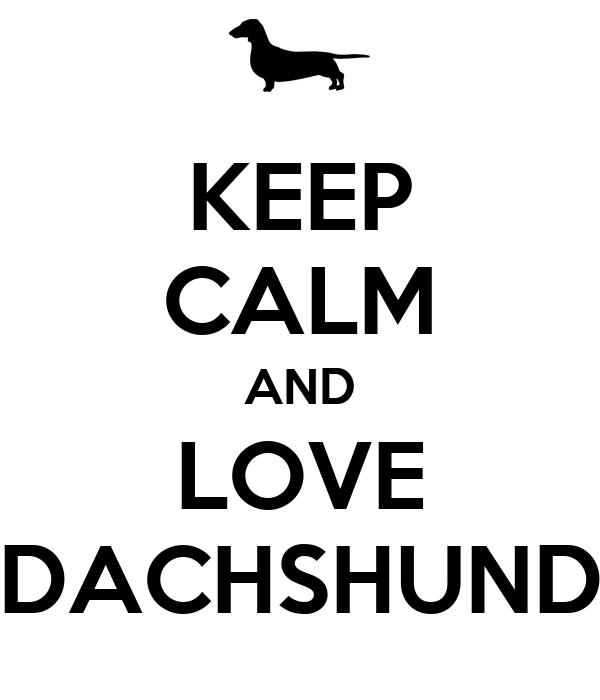 KEEP CALM AND LOVE DACHSHUND