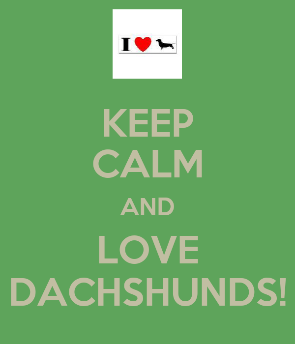 KEEP CALM AND LOVE DACHSHUNDS!