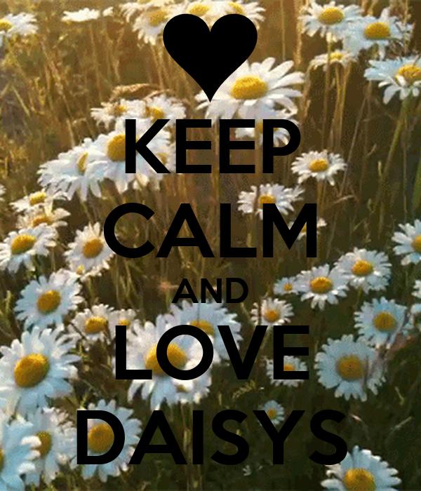 KEEP CALM AND LOVE DAISYS