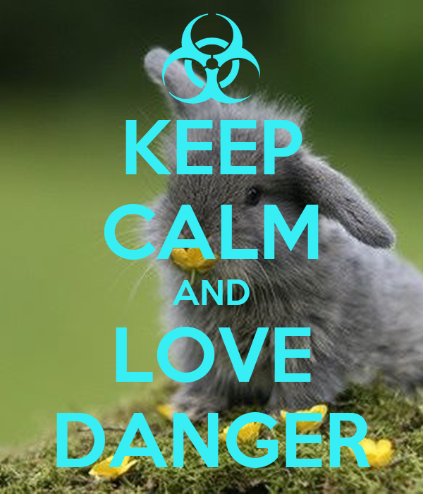 KEEP CALM AND LOVE DANGER