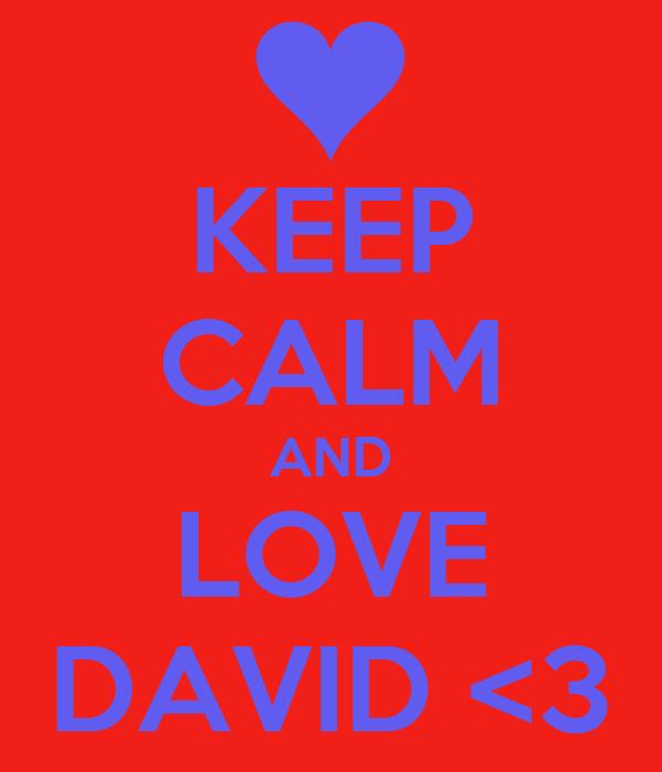KEEP CALM AND LOVE DAVID <3