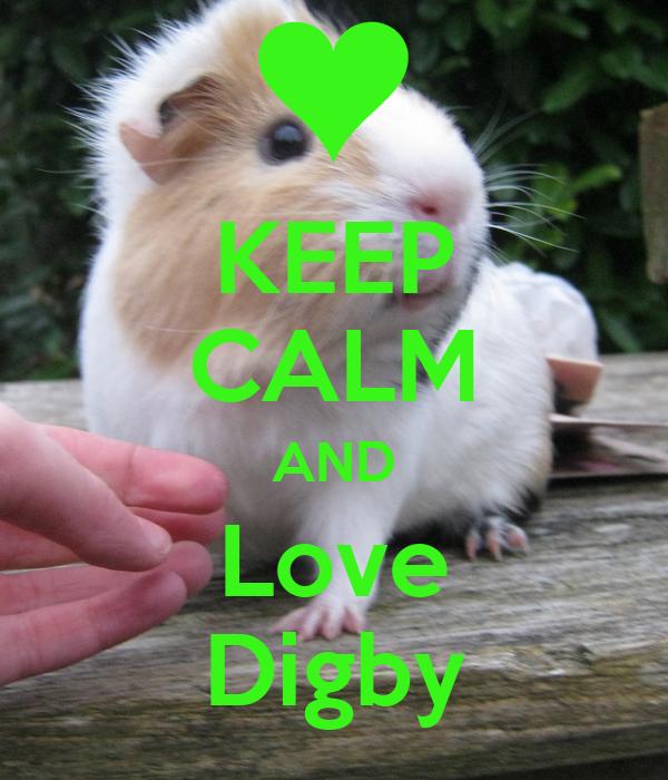 KEEP CALM AND Love Digby