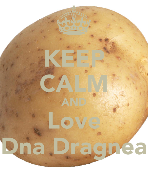 KEEP CALM AND Love Dna Dragnea