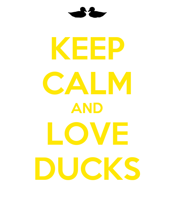 KEEP CALM AND LOVE DUCKS