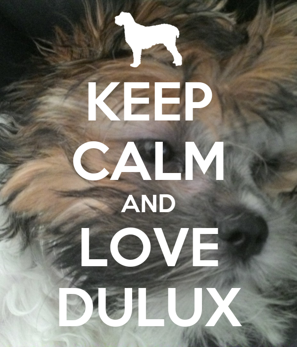KEEP CALM AND LOVE DULUX
