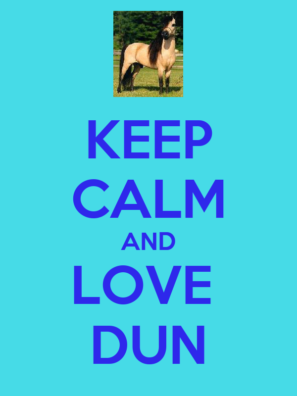 KEEP CALM AND LOVE  DUN