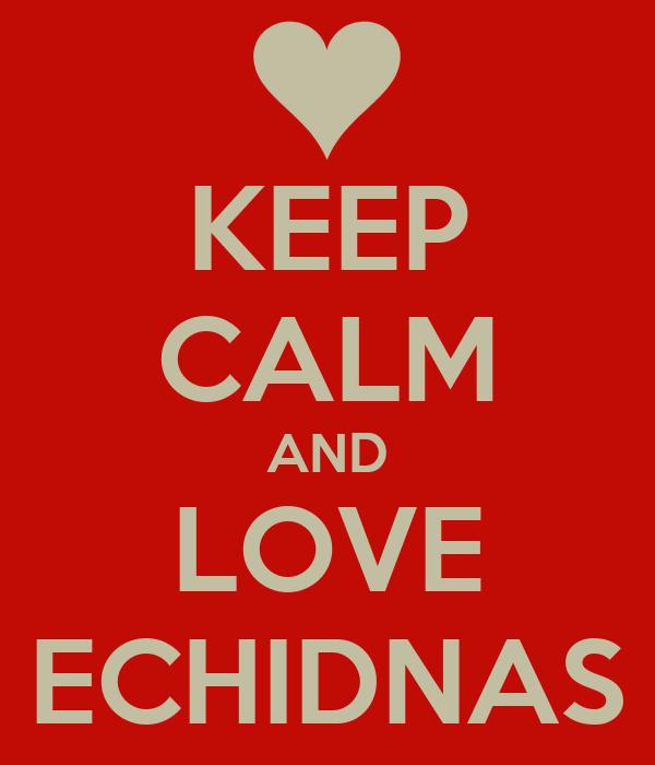 KEEP CALM AND LOVE ECHIDNAS
