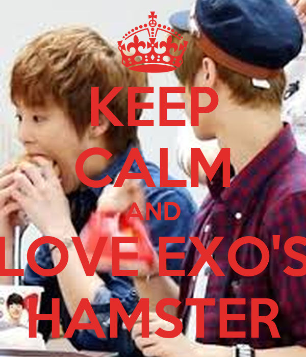 KEEP CALM AND LOVE EXO'S HAMSTER