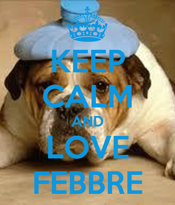 KEEP CALM AND LOVE FEBBRE