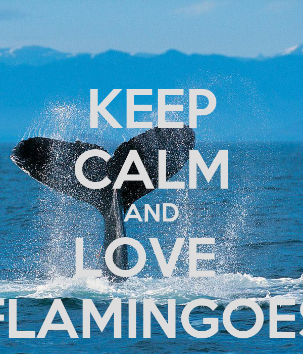 KEEP CALM AND LOVE  FLAMINGOES