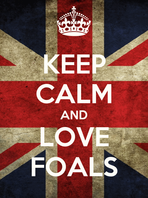 KEEP CALM AND LOVE FOALS