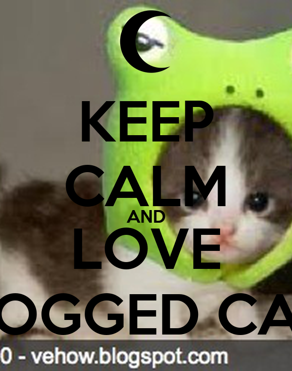 KEEP CALM AND LOVE FROGGED CATS