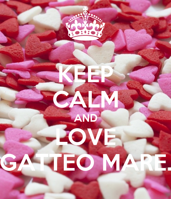 KEEP CALM AND LOVE GATTEO MARE.