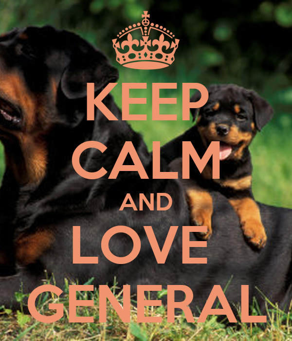 KEEP CALM AND LOVE  GENERAL