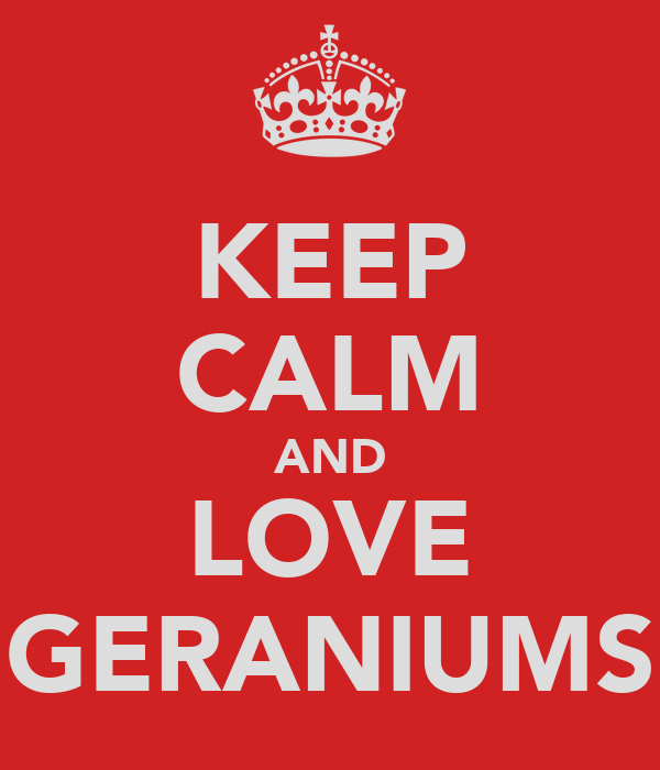 KEEP CALM AND LOVE GERANIUMS
