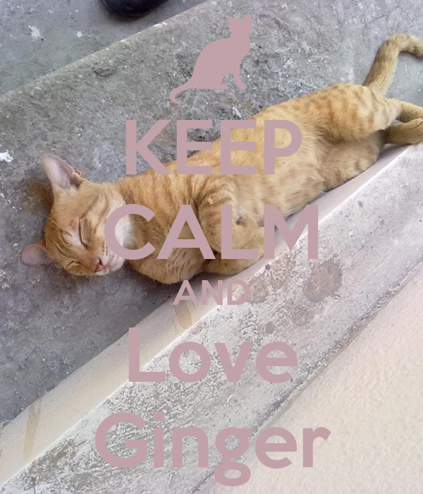 KEEP CALM AND Love Ginger