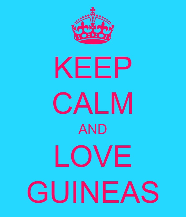 KEEP CALM AND LOVE GUINEAS