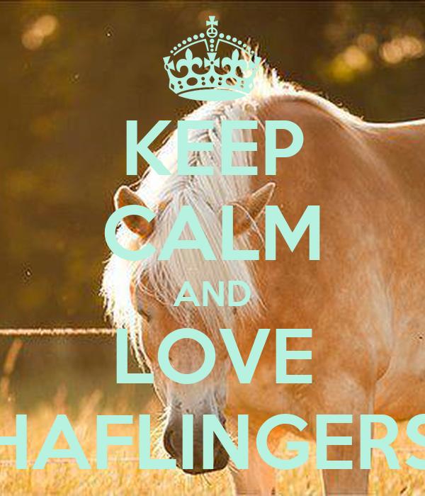 KEEP CALM AND LOVE HAFLINGERS