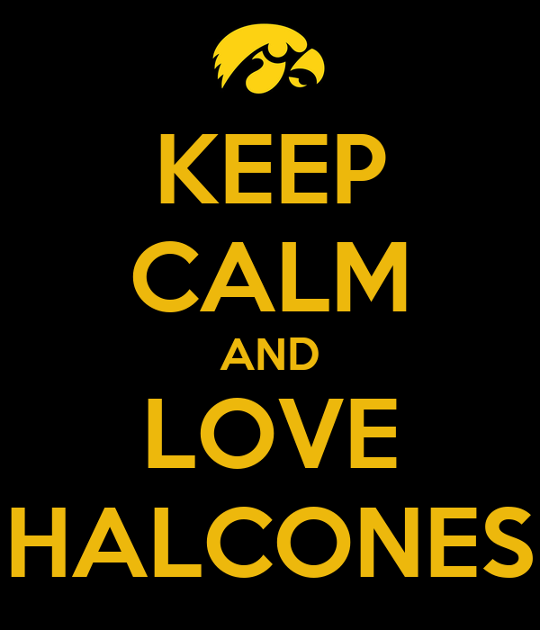 KEEP CALM AND LOVE HALCONES