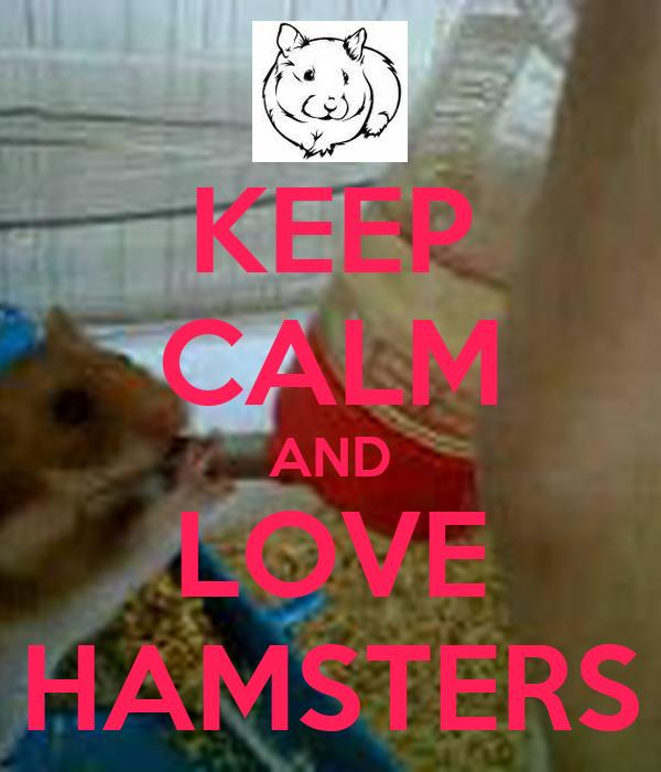 KEEP CALM AND LOVE HAMSTERS