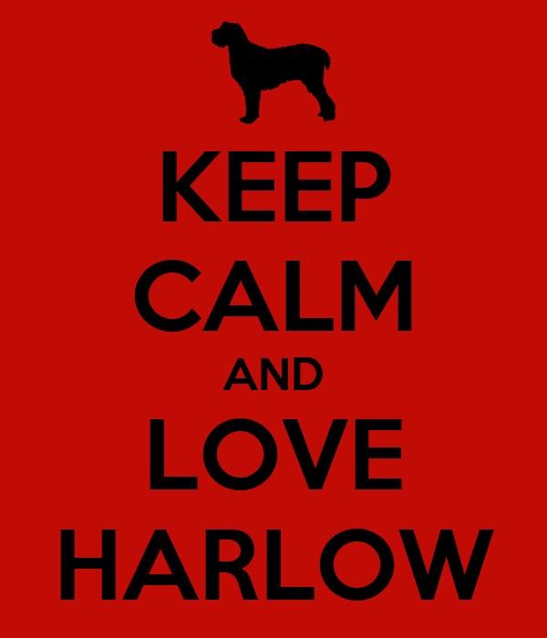 KEEP CALM AND LOVE HARLOW