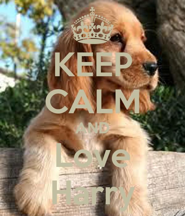 KEEP CALM AND Love Harry