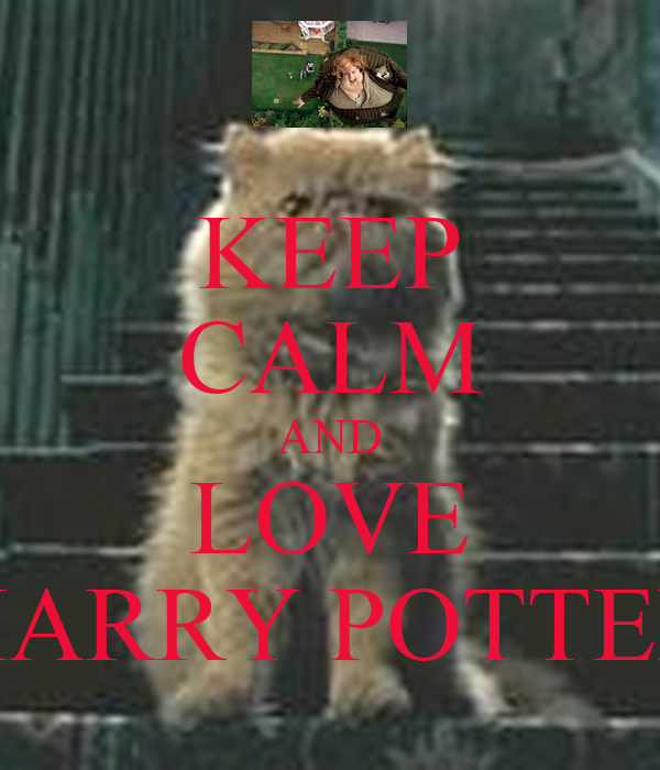 keep calm and love harry potter poster paige keep calm