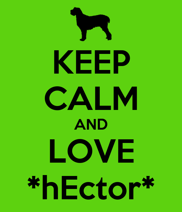 KEEP CALM AND LOVE *hEctor*