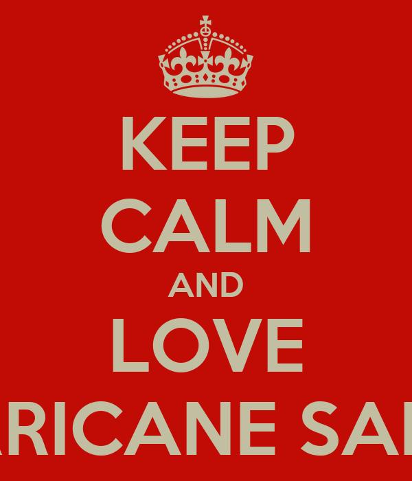 KEEP CALM AND LOVE HURRICANE SANDY