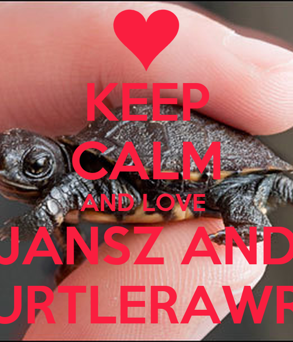 KEEP CALM AND LOVE  JANSZ AND TURTLERAWRR