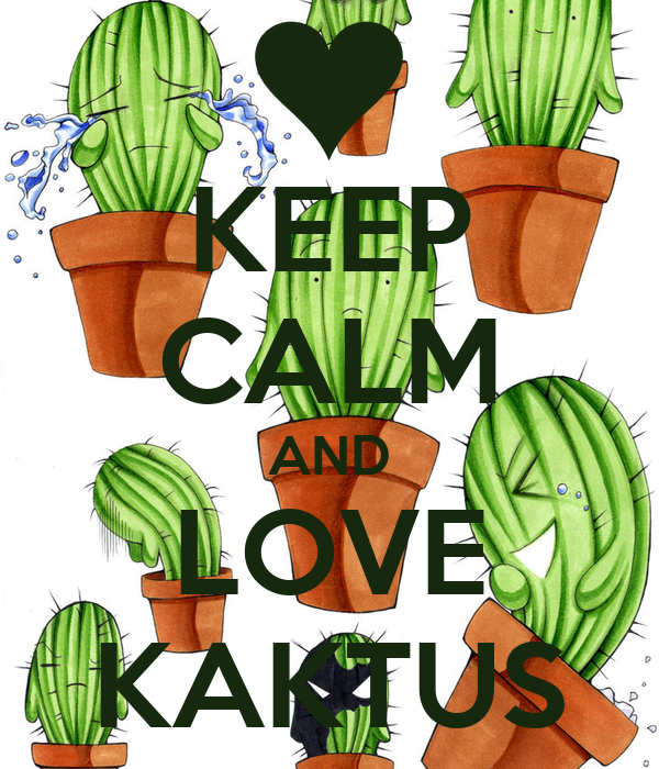 KEEP CALM AND LOVE KAKTUS
