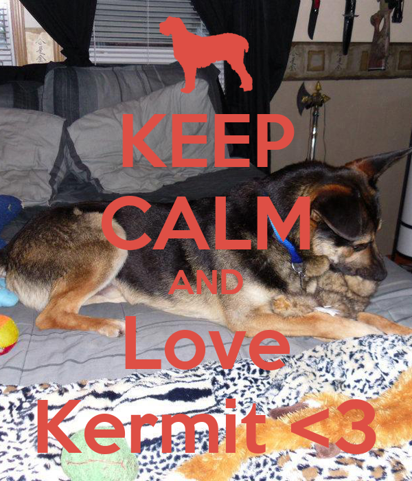 KEEP CALM AND Love Kermit <3