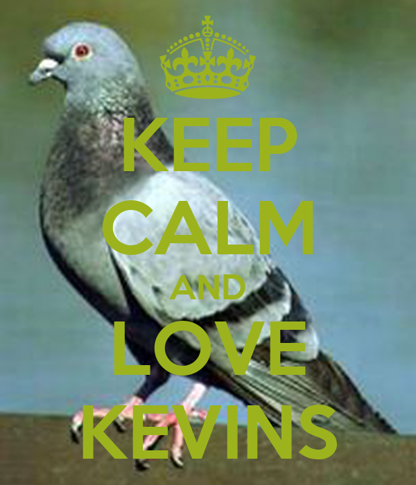 KEEP CALM AND LOVE KEVINS