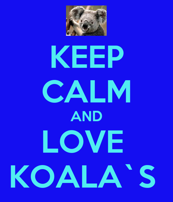 KEEP CALM AND LOVE  KOALA`S