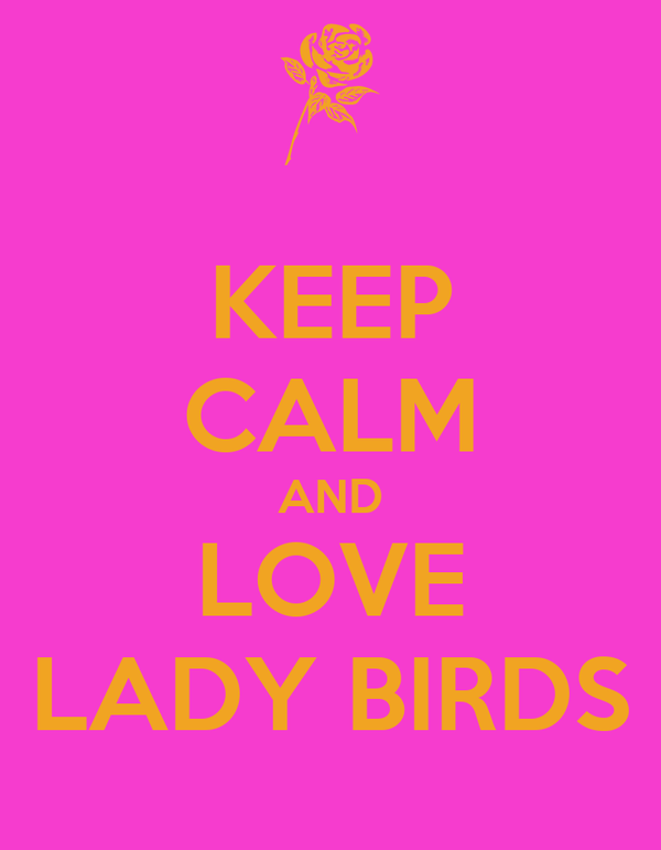 KEEP CALM AND LOVE LADY BIRDS