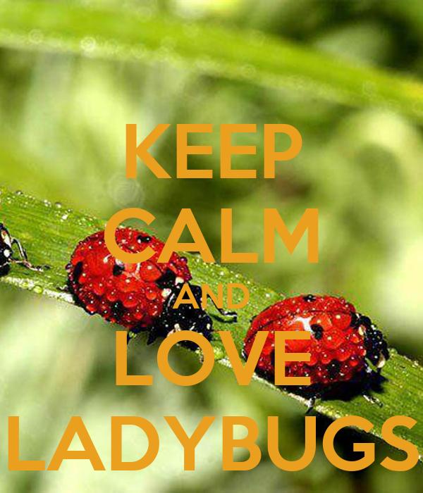 KEEP CALM AND LOVE LADYBUGS