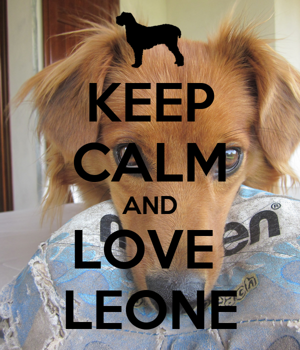 KEEP CALM AND LOVE  LEONE